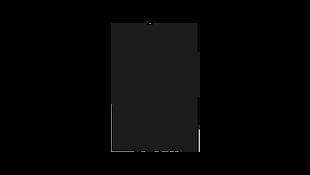Particular Books Logo